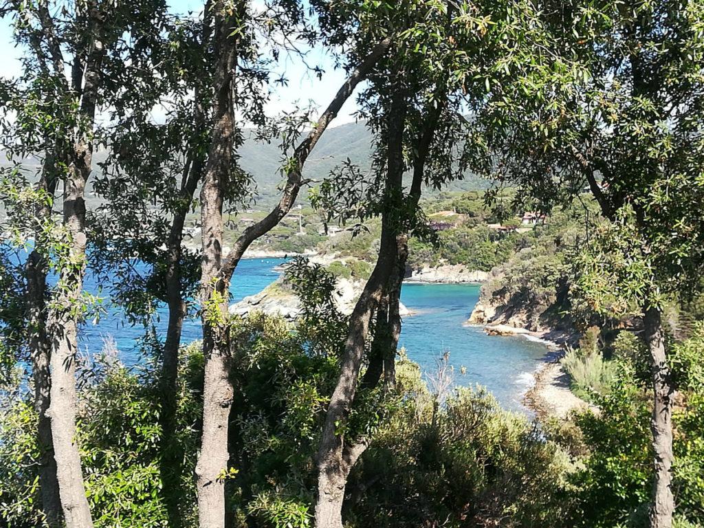 Isola-d-Elba-marciana